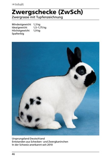 Standard_2015-Zwergschecke_Page_1